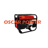 green selling magnetic power generator 1KW