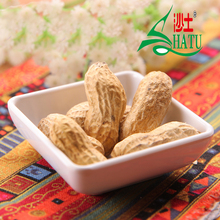 Wholesale Chinese roasted salted groundnut peanuts in the shell