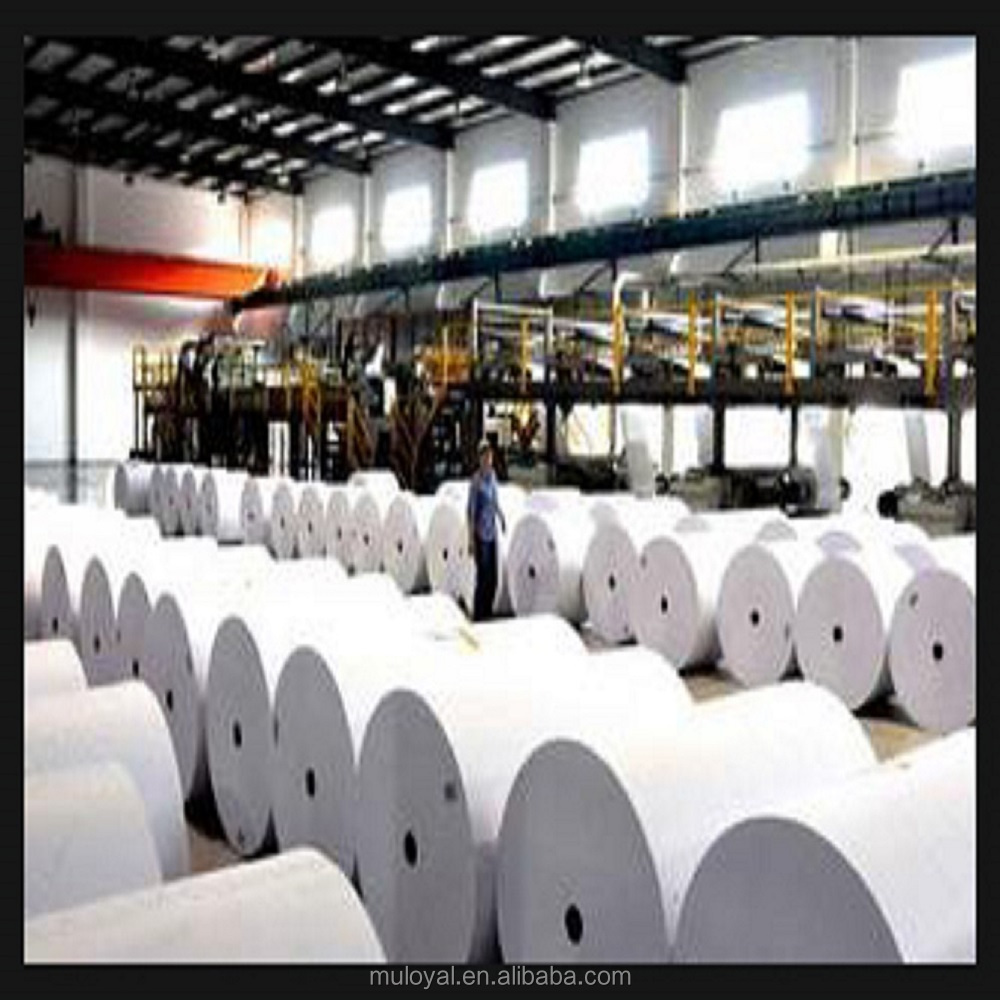 Offset Printing Paper Roll in China for Book Printing