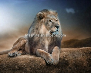 Lion diy embroidery diamond painting ,crystal diamond painting,5D diamond painting kit