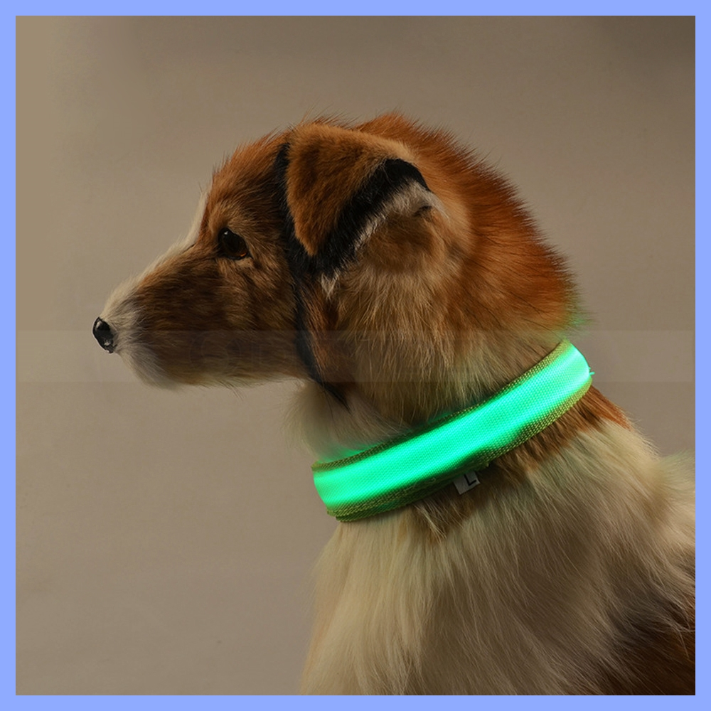 Nylon Pet Dog Collar Night Safety LED Light-up Flashing Glow in the Dark Lighted Circular Pendant Collar