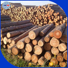 Radiation pine logs for sale from New Zealand