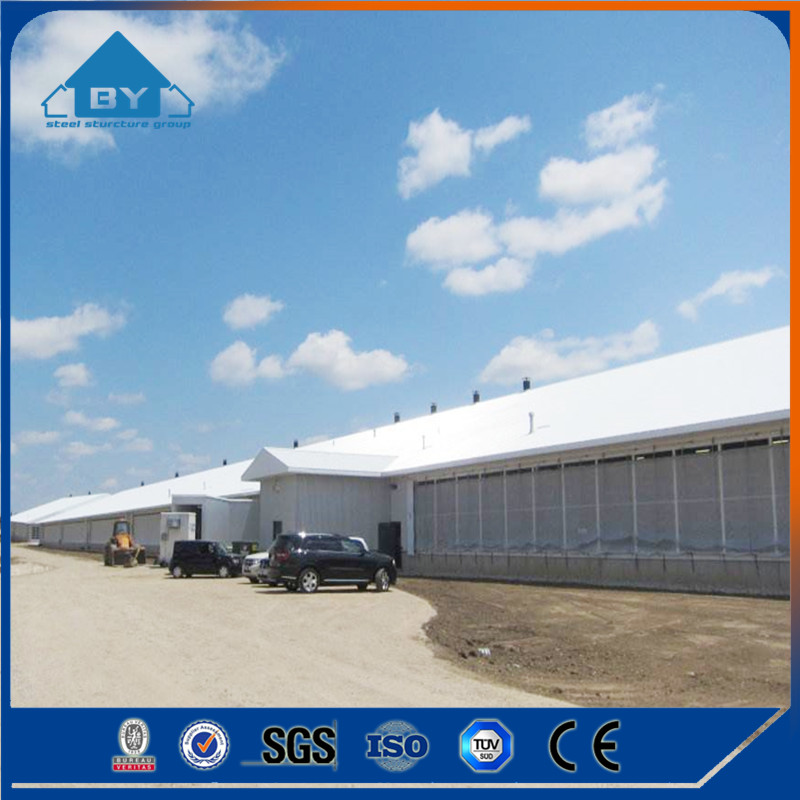 H Section Steel Structure Prefab Cow Farm House