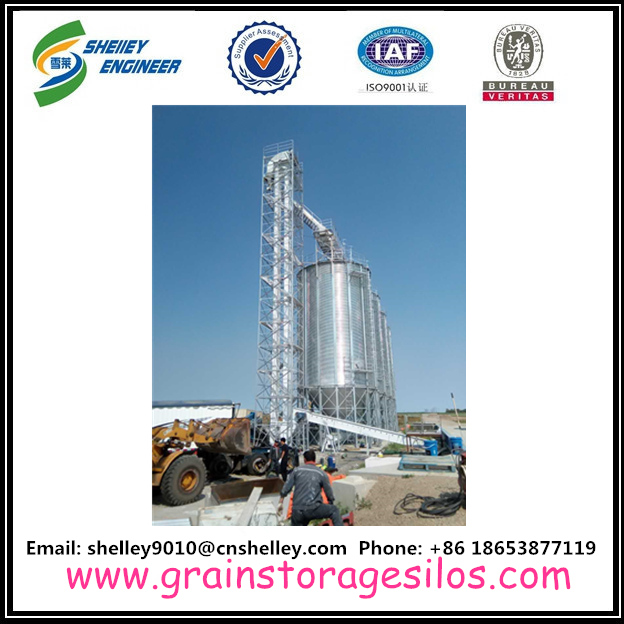 Carbon steel grain bucket elevator with painting