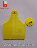 Laipson: manufacturer of high quality ear tag for cattle/cow/horse/camel