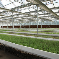 Commercial Agricultural Polycarbonate Greenhouse