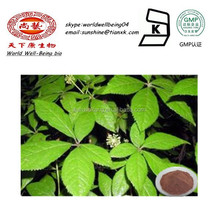 Herbal Medicine Damiana Leaf Extract Powder / Pure Natural Powder Damiana Herb Leaf Extract