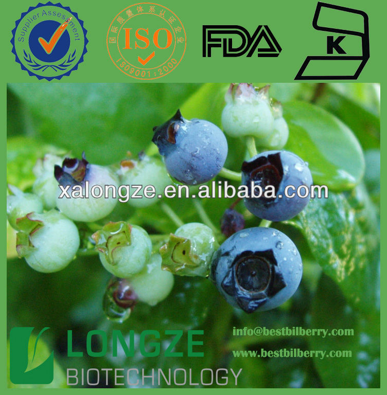 Blueberry P.E. natural edible pigment