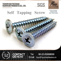 M10 wafer truss head self tapping screw galvanized for sale