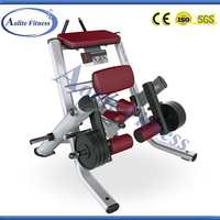 2014 New Design Gym Equipment Kneeling Leg Curl Leg Exercise Equipment