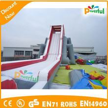 Top quality giant inflatable hippo water slide for adult