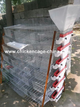 2017 Factory Offer Quail Cage System Factory Sale