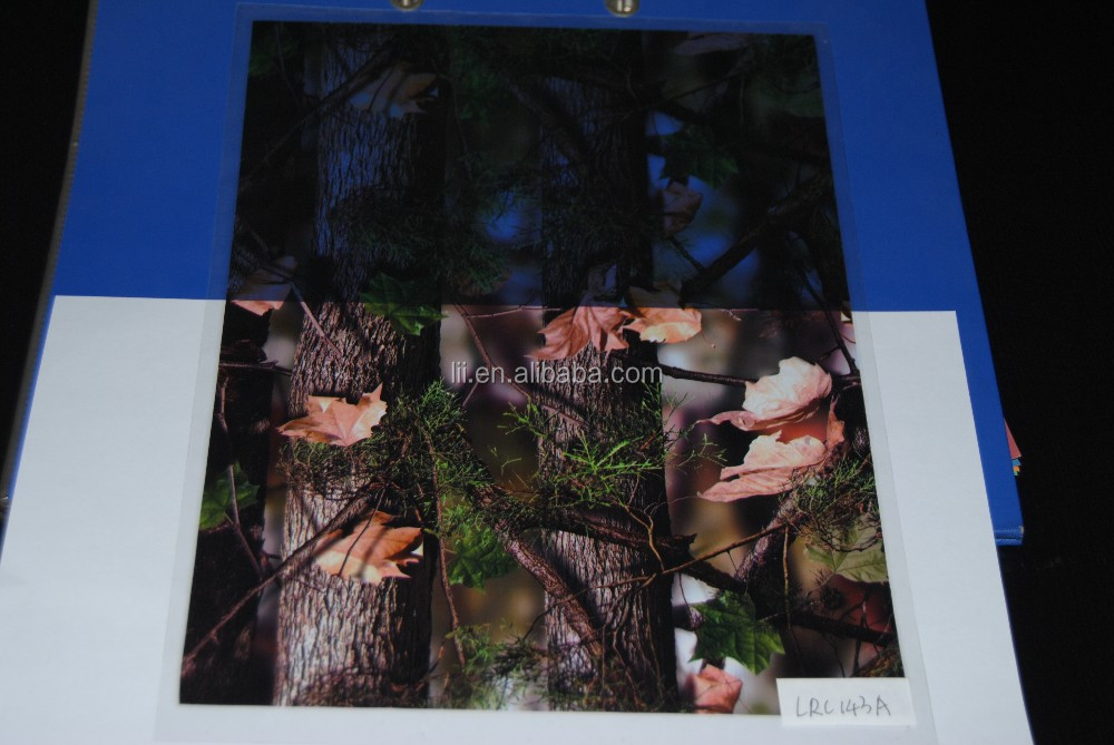 New Camo Pattern Water Transfer Printing Film ,Hydrographic Film,100cm Width No.LRC143A