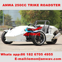 3 wheel motorcycle bajaj three wheeler price 250cc reverse trike trike roadster ztr