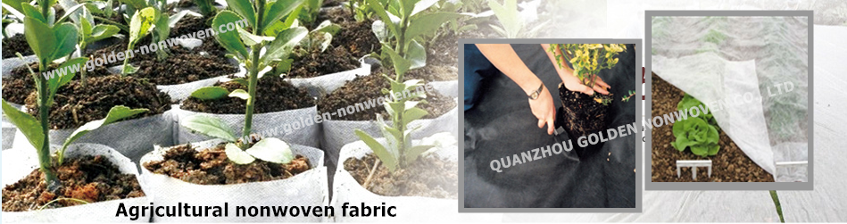 breathable PP non-woven fabric roll for agricutural