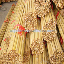 WYZ --0099 white bamboo /tokin bamboo /bamboo cane factory direct supply