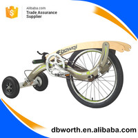 High quality smart folding bicycle / lightweight aluminum home gym bike/ customized three wheels bike better than tradmill