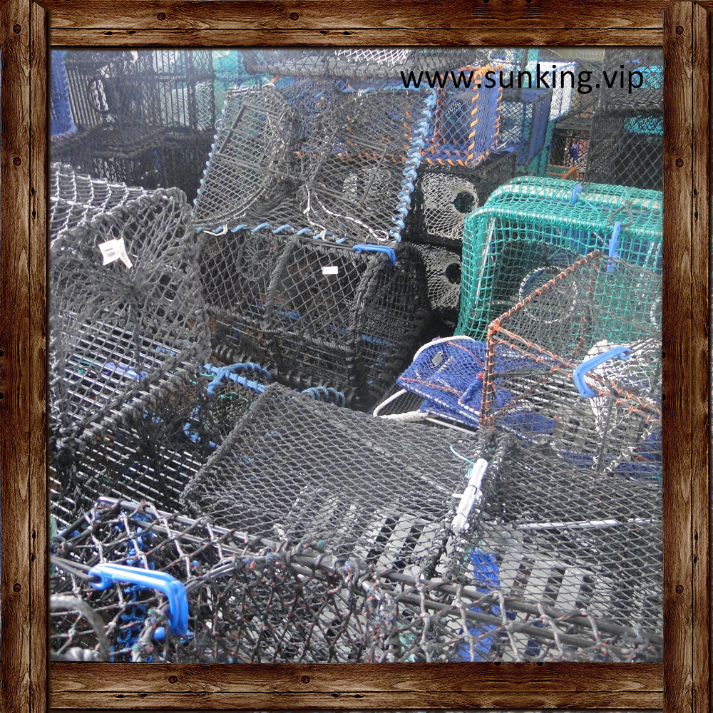 China Fishing Trap Net / Cage / Pot Factory