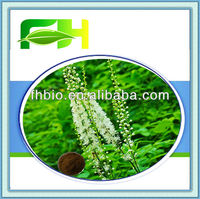 Best Quality Natural Black Cohosh P.E.