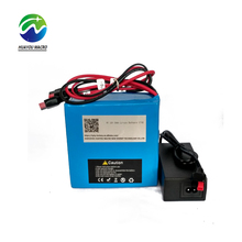 Car Rechargeable 12V 45Ah Li-Ion Lithium Li Ion Battery Pack