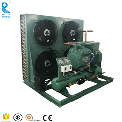 Commercial 3hp 8hp 12hp 15hp Cold Room Storage Bitzer Air Cooled 2 Stages Compressor Refrigeration Condensing Unit For Sale