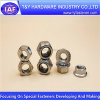 Professional manufacturer Fast Delivery hex nut hdg m33