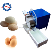 automatic egg grading machine/egg washing machine/egg grading packing machine