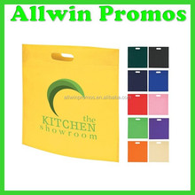 Custom Foldable Recyclable Non Woven Bag for Shopping