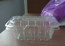 Take Away Plastic Pet Fruit Container