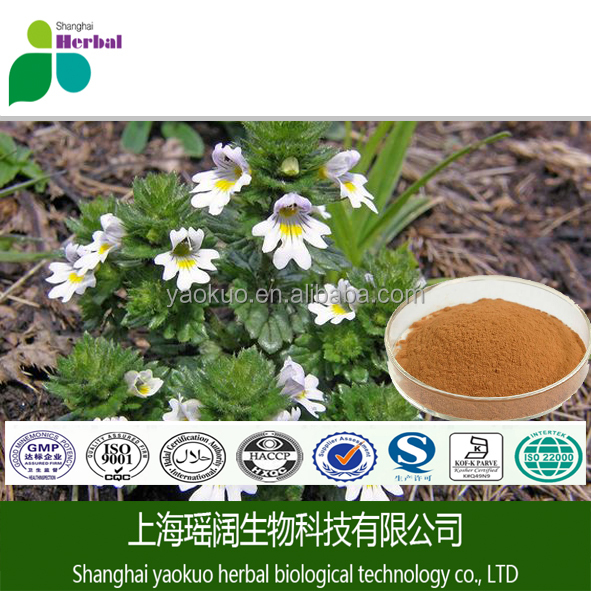 TLC Test 4:1-20:1 Wild Eyebright Herb Extract P.E. eyebright herb extract powder