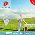 1kw 48v horizontal axis wind turbine alternator with single tail factory