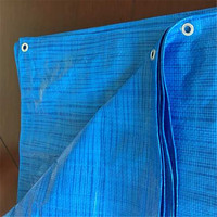 Multipurpose Waterproof Poly Tarp Reinforced Tarpaulin Perfect For Backpacking,Camping,Shelter,Shade,Ground Cover