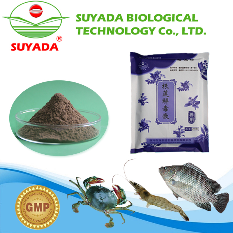 Most popular poultry herbal medicine and packaging can be customized