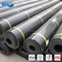 PE Plastic Processed and New Condition High Density Polyethylene Geomembrane