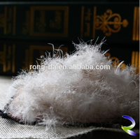 Fashion high quality wholesale feather home textile feather duck feather