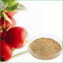 Export price 100% organic camu camu powder with best price for sale