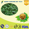 2015 Hot sale food additive Common lophatherum herb extract powder 5%-30% Bamboo leaf flavonoids