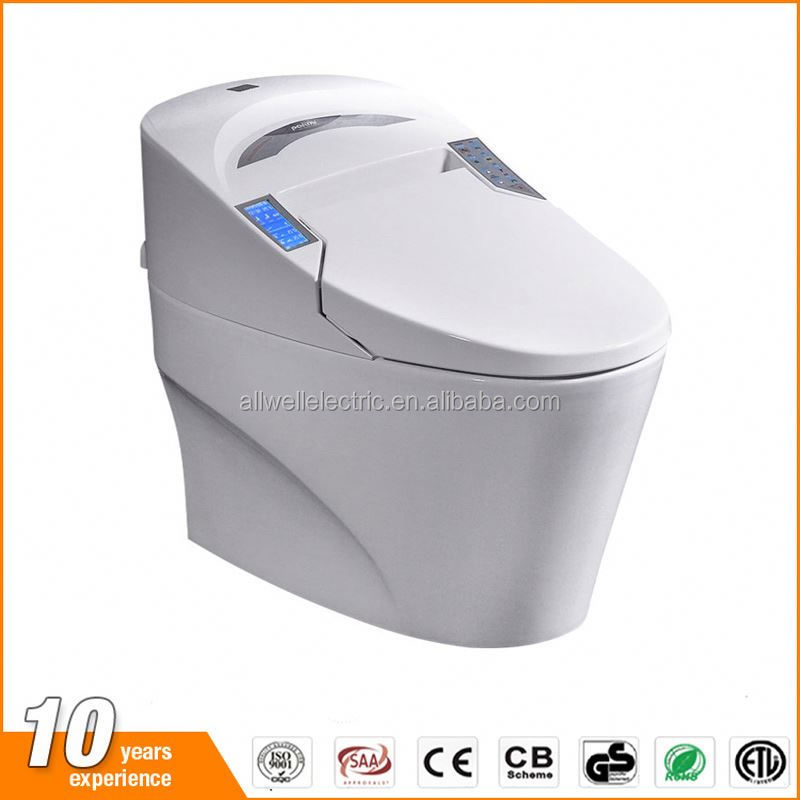 Remote control ass cleaning disabled automatic flush water closet