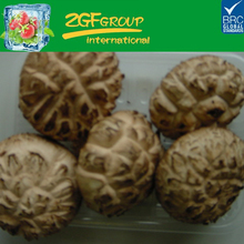 fresh delicious frozen stuffed mushrooms