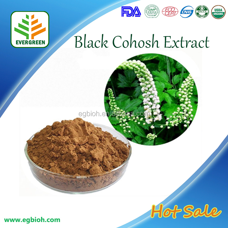 Wholesale Chinese Medcine Black Cohosh Root Extract,Black Cohosh Extract,Triterpen Saponine