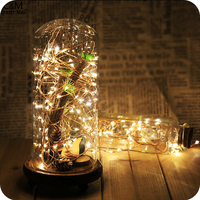 Best selling marriage decorating led copper wire fairy lights