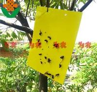 plastic yellow sticky insects,fly ,mosquito glue trap outdoor hanging