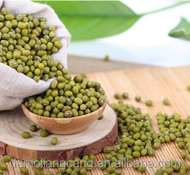 Price For Green Mung Beans Competitive Price 2016