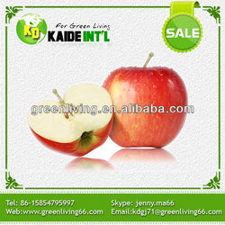 Organic Fresh Apple Supplier From China