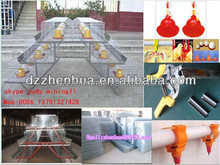hot dipped galvanized cheap decorative bird cages/poultry farming equipment/ cage with high quality