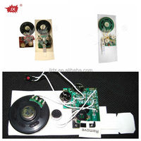 Mini size voice recording module for greeting card