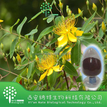 Natural Plant Extract St John Wort Extract Hypericin 0.3% powder Hypericum perforatum powder