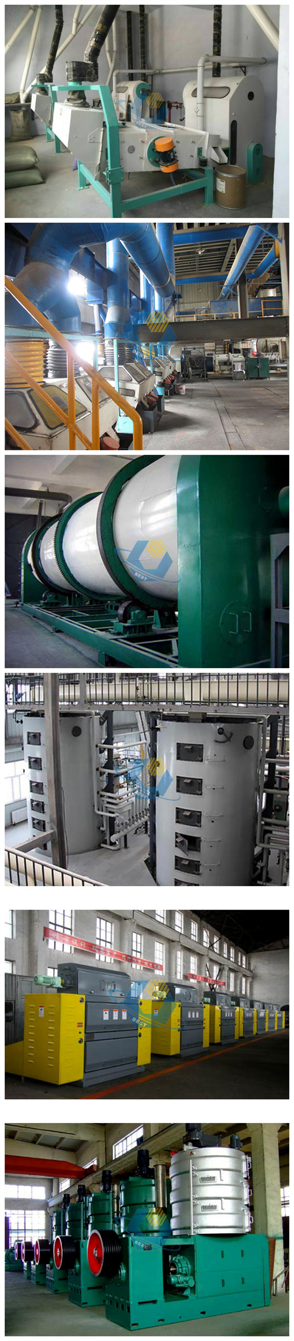 10-50TPD sunflower processing oil plant with low cost