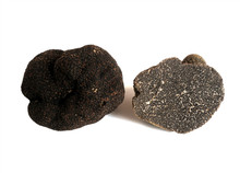 Competive price wholesale truffle deploy in bulk supplying
