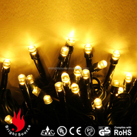 Most popular with Great quality grape string light